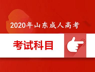 2020年万博manbetx官网app下载万博体育手机版登陆考试内容